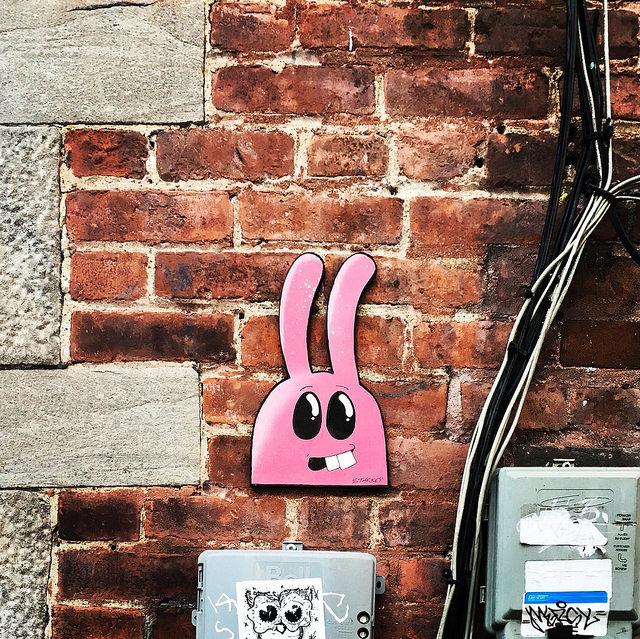 bunny montreal